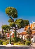 Bonsais y demonio-guardia en el palacio, Wat Arun Imágenes de archivo libres de regalías