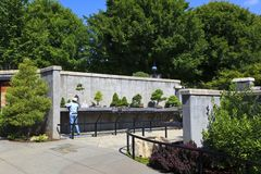 Bonsaiträdgård på norr Carolina Arboretum Asheville royaltyfri foto