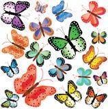 Bont vlinders van verschillende grootte Royalty-vrije Stock Foto