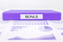 Bonus documents, graphs analysis and financial report Stock Images