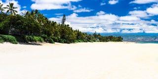Bonzai. Pipeline beach on the island of Oahu Royalty Free Stock Photography