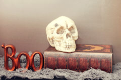 Boo and skull with halloween book of spells Stock Photos