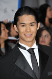 BooBoo Stewart,  Royalty Free Stock Photo