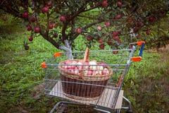 Boodschappenwagentje met appelen Stock Foto