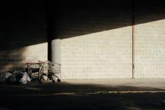 Boodschappenwagentjes met stapel van vuilnis royalty-vrije stock afbeeldingen