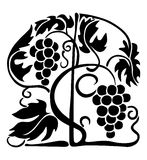 Boog van wijnstok Royalty-vrije Stock Afbeeldingen