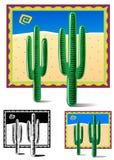 Boogie del cactus Fotos de archivo