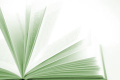 Book. Open book on plain background Royalty Free Stock Images