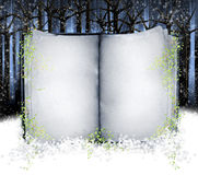Book. An open book with aged pages in snow with leaves floating around the borders of the book. Concept for winter or Christmas seasonal holiday Stock Photography