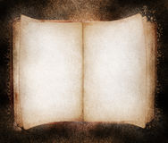 Book. An open book in sepia tones with textured paper and surface Royalty Free Stock Image