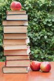 Book. S and apples on the table stock photography