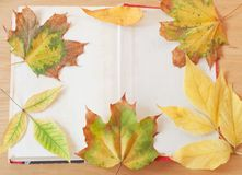 Book. Old book with autumn leaves stock image