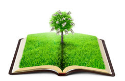 Book. Of nature with grass and money tree over white background Stock Image