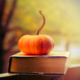 Book And Pumpkin Stock Image