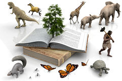 The book and the animals Royalty Free Stock Images