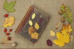The book of autumn. Fall colors, colorful leaves of trees on brown cloth background. Place for your text. Stock Image