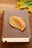 A book and an autumn leaf Stock Photography