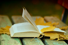 Book and autumn leaves Stock Photography