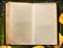 Book on autumn moss ground Stock Photography