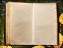 Book on autumn moss ground Stock Photography