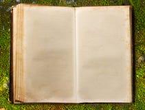 Book on autumn moss ground Stock Photos