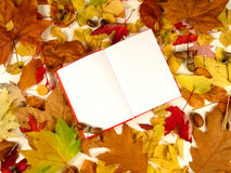 The book of autumn (serie) stock photo