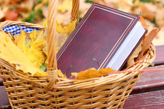 Book in a basket stock image