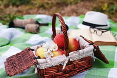 Book and basket with food on plaid picnic in park Stock Photography