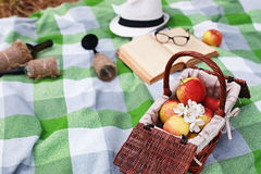 Book and basket with food on plaid picnic in park. Book and basket with food on plaid picnic in spring parkr Stock Image