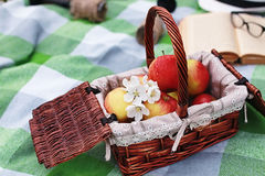 Book and basket with food on plaid picnic in park. Book and basket with food on plaid picnic in spring parkr Stock Photography