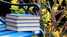 Book bench wind tree background nobody. Day light stock footage
