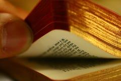 book bläddring Arkivfoton