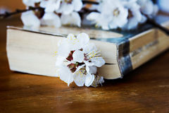 Book and blossoming branc Royalty Free Stock Photo
