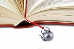 book bokmärkehanden - som göras öppen Royaltyfria Bilder