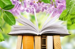 Book. Open icon business studying literature closeup Stock Images