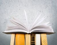 Book. Open icon business studying literature closeup Stock Image