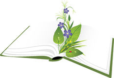 Book and bouquet of flowers with ladybird Stock Images