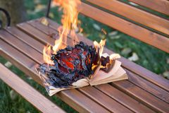 The book burns. Stock Photography