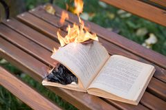 The book burns. Royalty Free Stock Photo