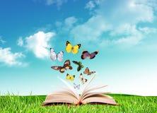 Book and butterflies Stock Photos