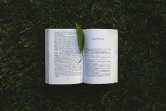 Book: chapter six royalty free stock photos