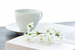 Book cherry blossom and cup Royalty Free Stock Image