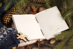 Book with Christmas decoration on the wooden rustic table. Open book with Christmas decoration on the wooden rustic table Stock Photos