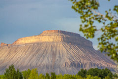 Book Cliffs in Colorado. Beautiful colorful image with the book cliffs in the background.  The photo has browns greens and yellows in it Stock Images