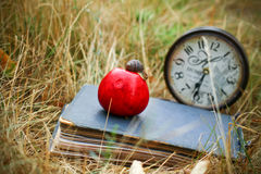 The book, clock, apple snail lay on dry grass Royalty Free Stock Photo