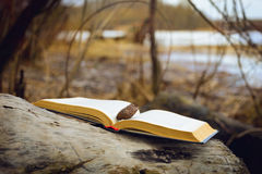 Book Close to the River royalty free stock photo