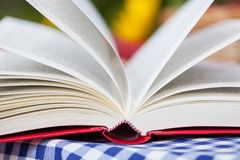 Book closeup Royalty Free Stock Photography