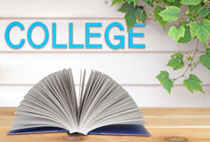 Book and college Royalty Free Stock Photo