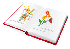 The book with color pictures Royalty Free Stock Images