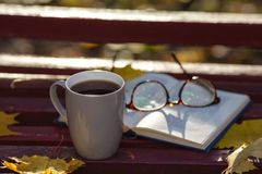 A book with colored leaves embedded in it lies on a bench in the Royalty Free Stock Photo